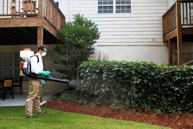 Man spraying pest control chemicals in the backyard of a home.