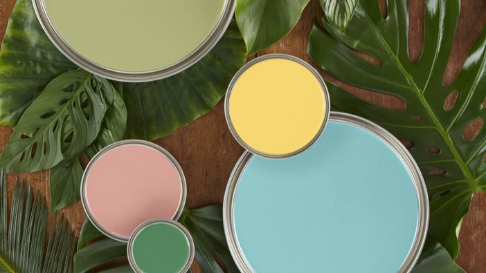 Open paint cans with greenery background
