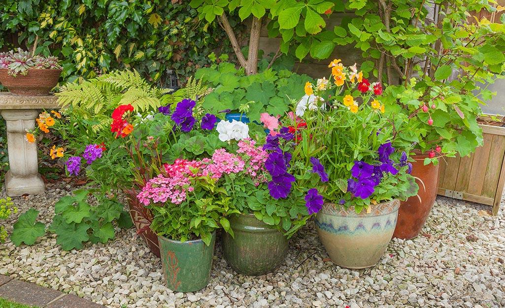 Garden Ideas for Home Sale